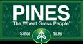 Pines International