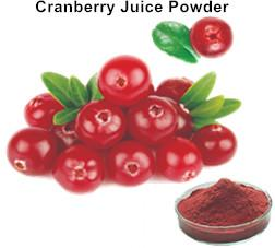 Cranberry Juice Powder_Ginkgo Biloba Extract Green Tea Extract Aloe Vera gel freeze dried powder Plant extract Botanical extract
