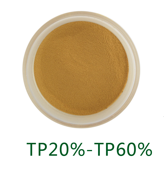 Instant green tea powder_Anhui Redstar Pharmaceutical Corp., Ltd