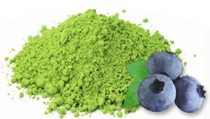 Blueberry Matcha Green Tea - AOI Tea Company