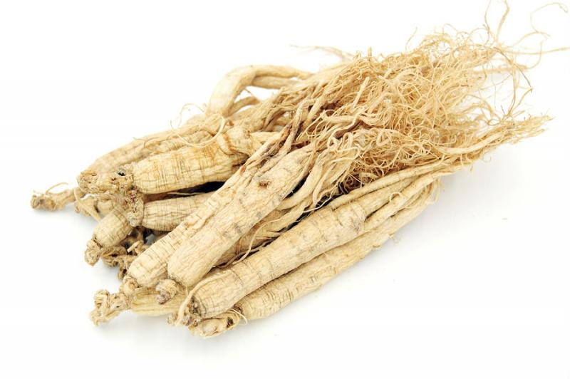 American Ginseng Extract-Botanical Extracts-Auropure LifeScience Co., Ltd.