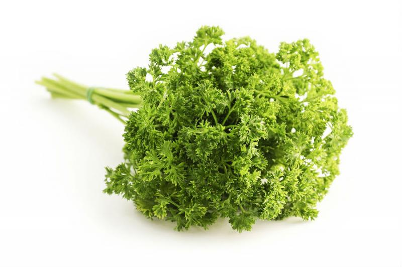 Celery Seed Extract-Botanical Extracts-Auropure LifeScience Co., Ltd.