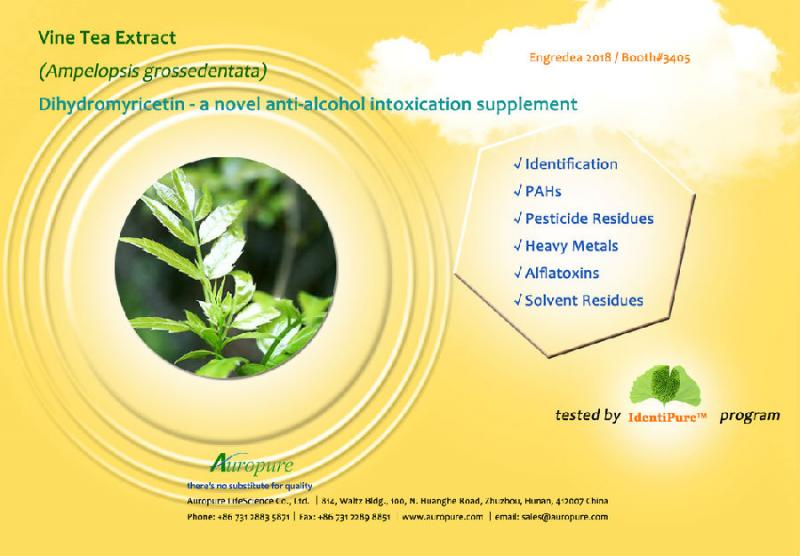 Vine Tea Extract - Novel Anti-alcohol Intoxication Supplement-New Products-Auropure LifeScience Co., Ltd.