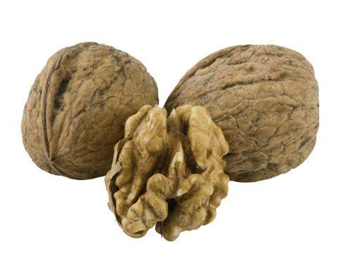 Black Walnut Hulls Juglans Nigra (Black Walnut) Shell Extract - Bio Botanica
