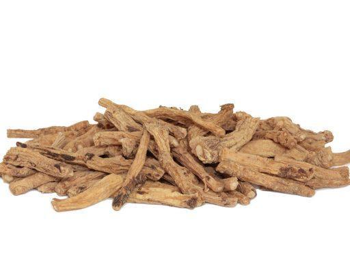 Codonopsis Root Codonopsis Lanceolata Root Extract - Bio Botanica