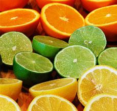 Citrus, Whipped Toppings, Emulsifiers, & Cloud Agents - Bluegrass Dairy & Food