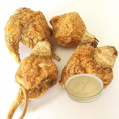 Maca Extract-Changsha Zhongren Biotechnology Co., Ltd.