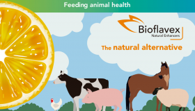 Animal Health & Nutrition | Ferrer Corporate