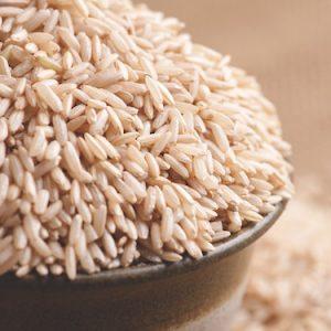 Organic Sprouted Brown Rice Protein Powder – Guzen Development