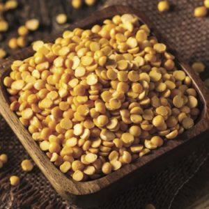 Organic Pea Protein Powder – Guzen Development