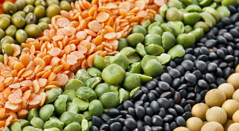 Pulses & Soybeans - HFI