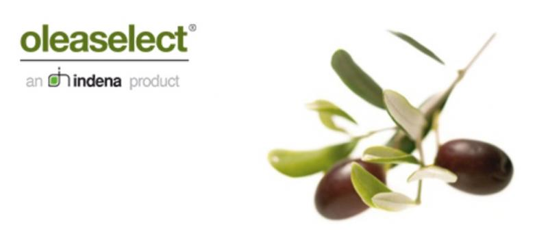 Oleaselect, Olive Pulp, Indena