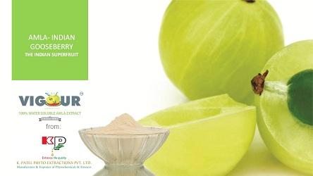 VIGOUR High Antioxidant value, Indian Gooseberry, Innovative AMLA