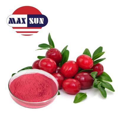 Cranberry Juice Powder Manufacturer & Suppliers & Distributor - Wholesale Bulk Cranberry Juice Powder for Sale from Factory - MAXSUN