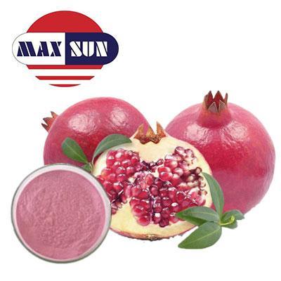 Organic Pomegranate Juice Powder Manufacturer & Suppliers & Distributor - Wholesale Bulk Organic Pomegranate Juice Powder for Sale from Factory - MAXSUN