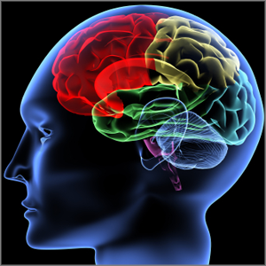 Cognitive/Memory/Sleep | Molecular Health Technologies LLC.