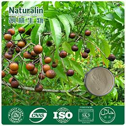 Soap Nut Extract_Plant Extract,Plant Extracts Innovator,Naturalin Bio-Resources Co., Ltd