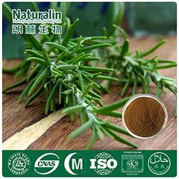 Rosemary Extract_Plant Extract,Plant Extracts Innovator,Naturalin Bio-Resources Co., Ltd