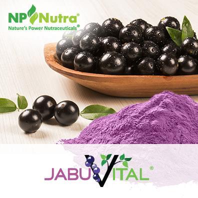Jabuticaba Juice Powder