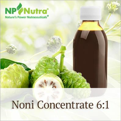 Noni Concentrate 6:1