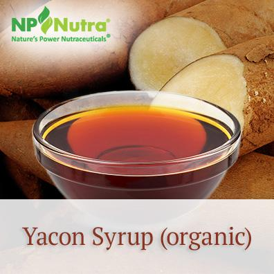 Yacon Syrup (organic)