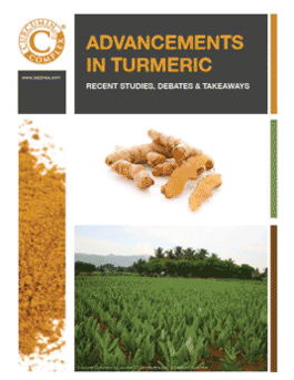 Advancements in Turmeric: studies, debates, takeaways