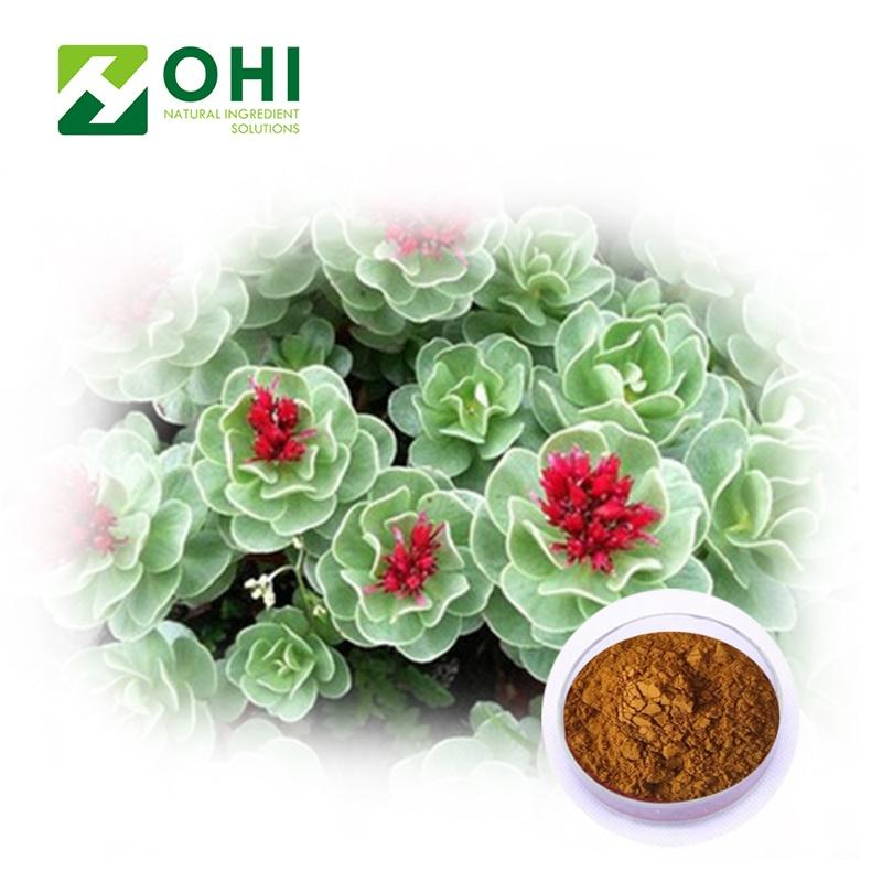 Rhodiola rosea L extract - Plant Extract - organic herbs suppliers - Organic Herb Inc