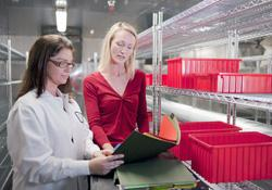 ICH Stability Testing and Storage - Pace Analytical Life Sciences   Pace Analytical Services