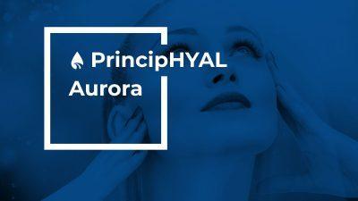 PrincipHYAL Aurora - ROELMI HPC