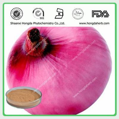 Onion Extract Powder/Onion extract