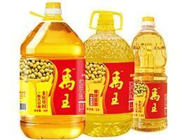GradeⅠ Soybean Oil - Yuwang Brand Series - yuwanggroup