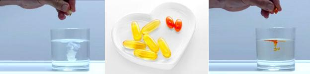 Omega-3 plus CoQ10 Supplement | Source One Global Partners