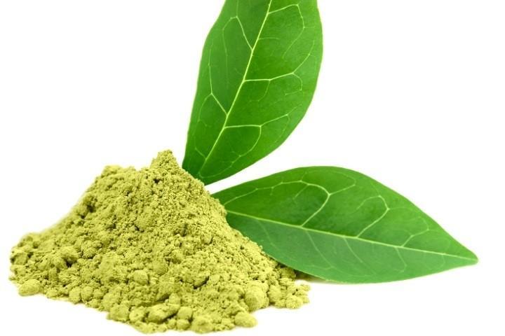 Green Tea Extract 60% EGCG