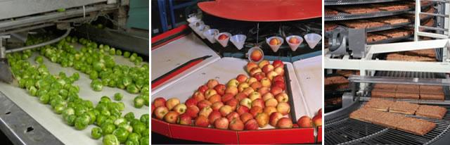 Univar Environmental Sciences | Food Processing