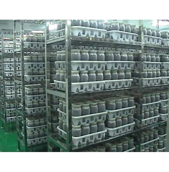 Kudzu Mycelium Bioactive Material - Product - XD Market
