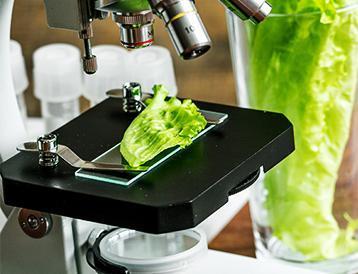 Food Testing | Merieux Nutrisciences US