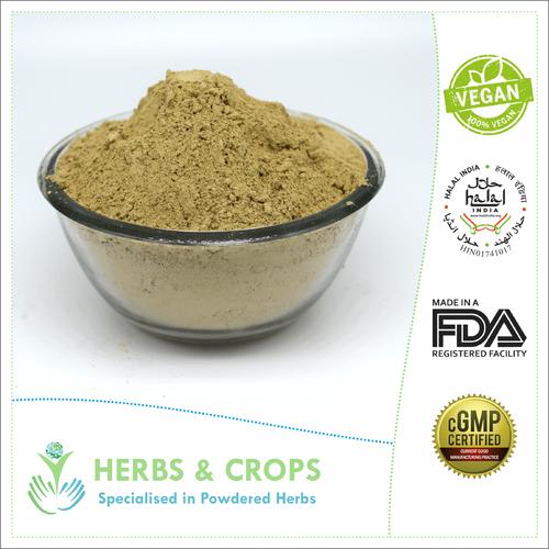 Aloe Vera Leaves Powder