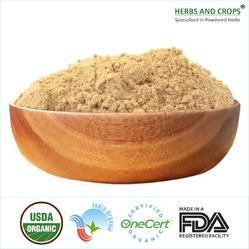 Certified Organic Product - Organic Aloe Vera Leaves Powder Manufacturer from Ahmedabad