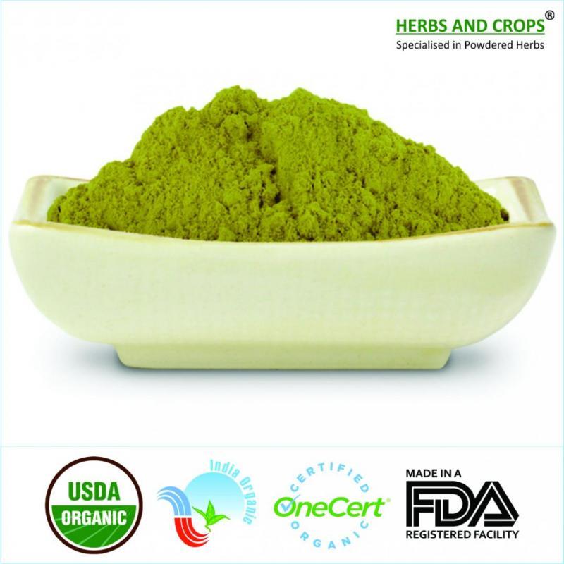 Organic Senna Leaves Powder