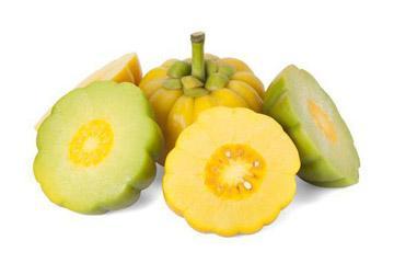 Garcinia Cambogia Extracts - Herbal Extracts - Cymbio Pharma