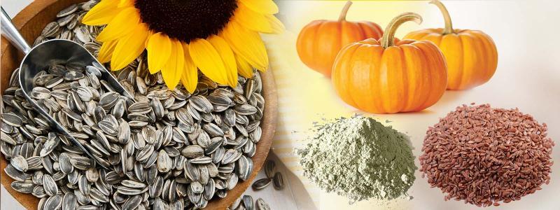 pumpkin seed protein manufacture
