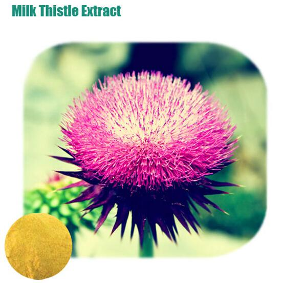 MILK THISTLE EXTRACT_Forward Farma Inc.