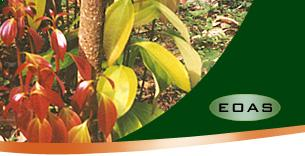 EOAS Organics :: Products