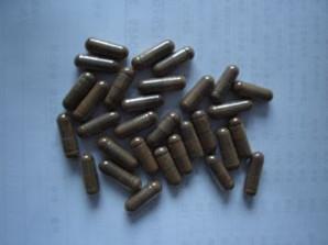 Irpex Lacteus Polysaccharide Capsule