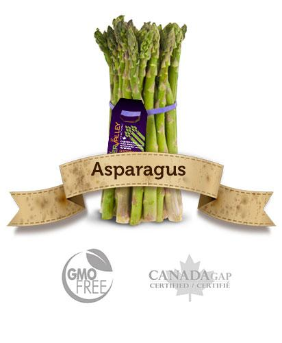 Asparagus  - River Valley Specialty Farms