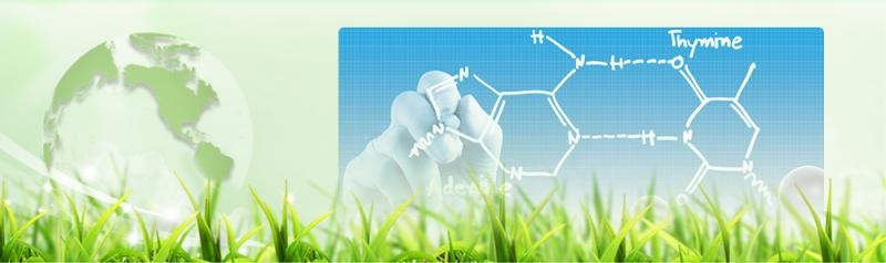 L-Valine - Anhui Huaheng Biotechnology Co., Ltd.