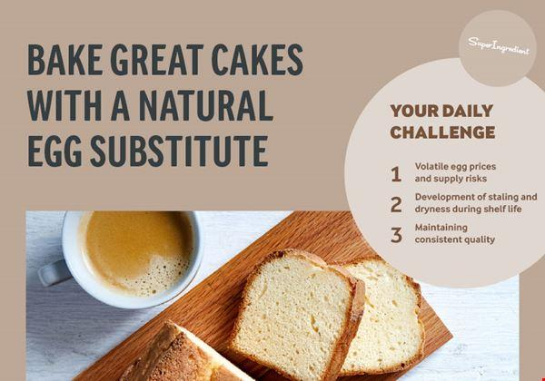 Egg replacement in cakes | Arla Foods Ingredients