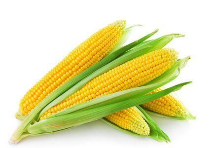 Corn husk sprayed_Feed series_BLB Group CO ..Ltd.