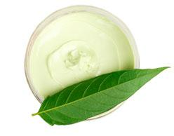Botanical Extracts for Personal Care Product Manufacturers