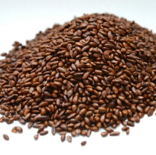 Sea Buckthorn Seed